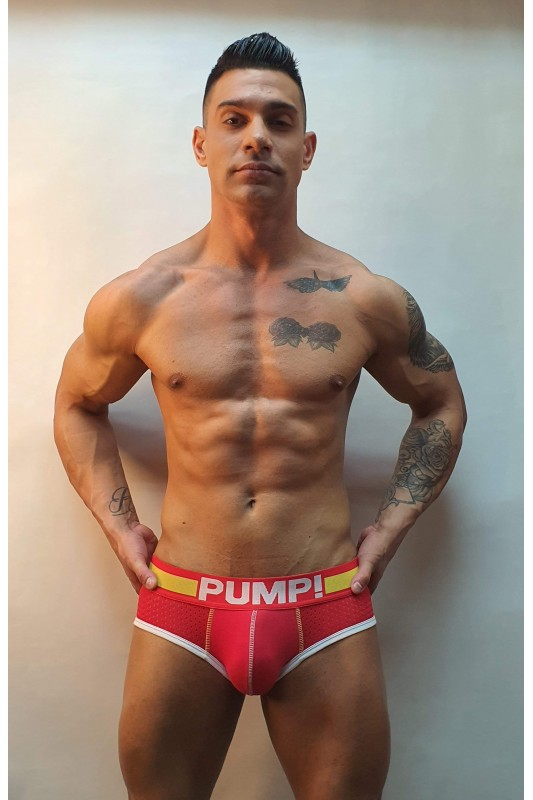 Pump brief